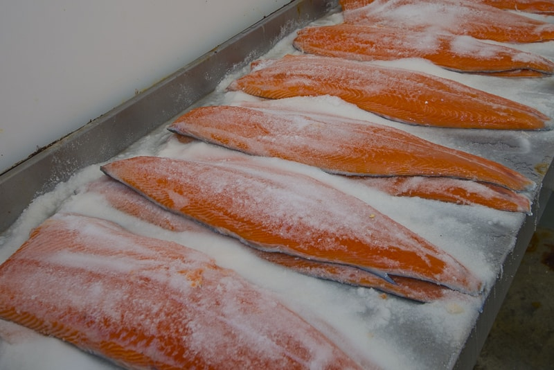 salting the salmon